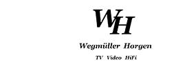 Wegmueller Logo